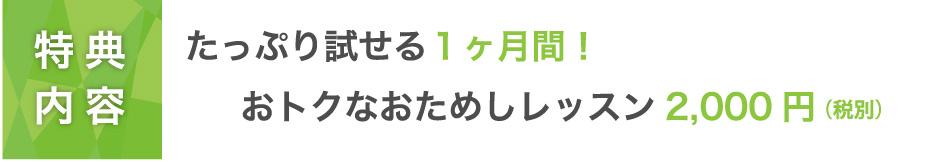 【特典内容】たっぷり試せる1ヶ月間!おトクなおためしレッスン2,160円!